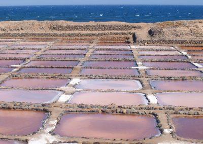 Desarrollo de proyecto de consultoria – Plan director de Las Salinas de Pozo Izquierdo