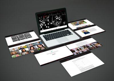 Diseño web – Premios Zarcillo 2018